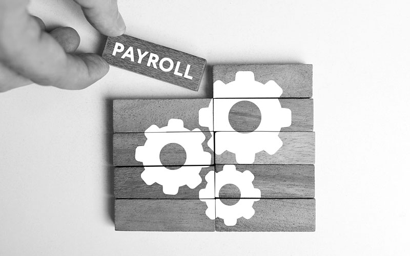 Payroll software.